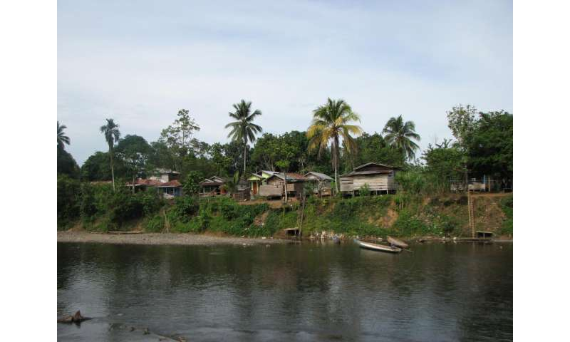 No one is an island: The history of human genetic ancestry in Madagascar