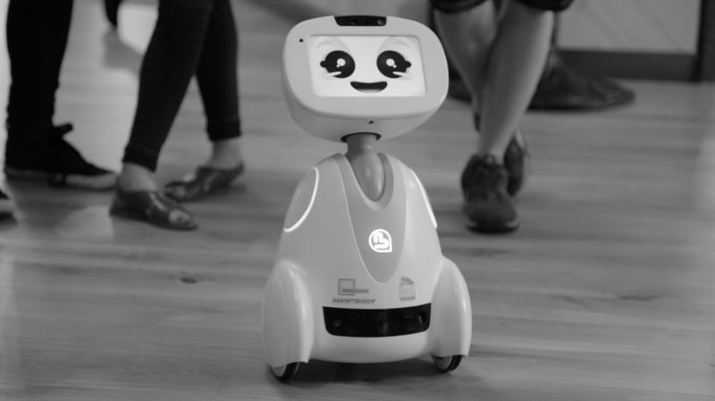 Sense-making processes of human-robot encounters