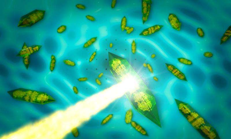 SLAC X-ray laser turns crystal imperfections into better images of important biomolecules