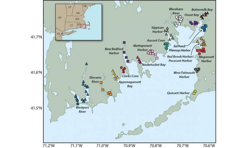 Study reveals climate change impacts on Buzzards Bay