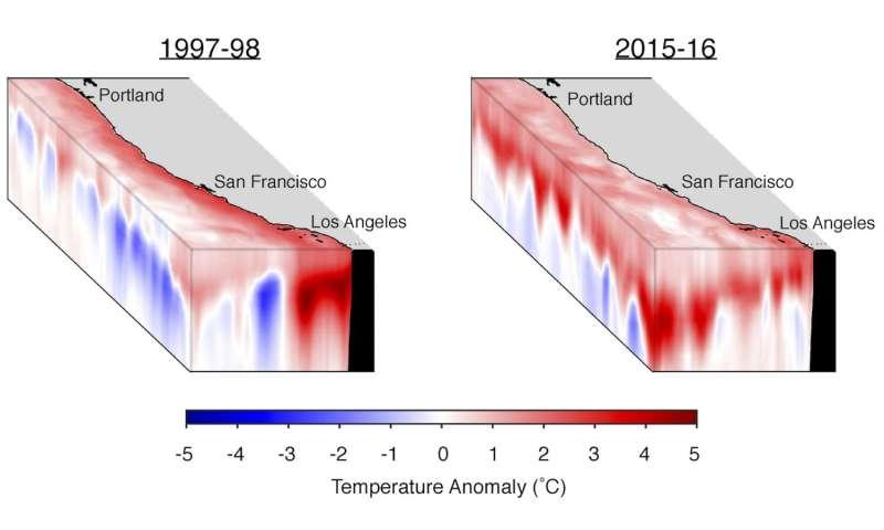 'The Blob' overshadows El Niño
