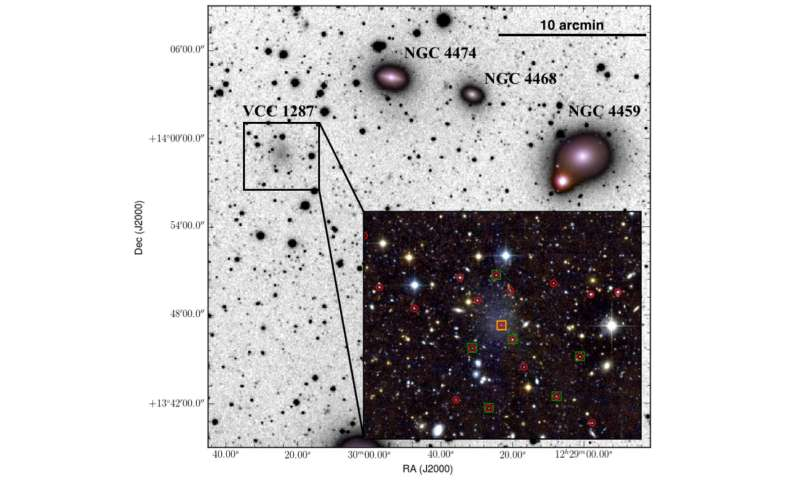 The dark side of the fluffiest galaxies