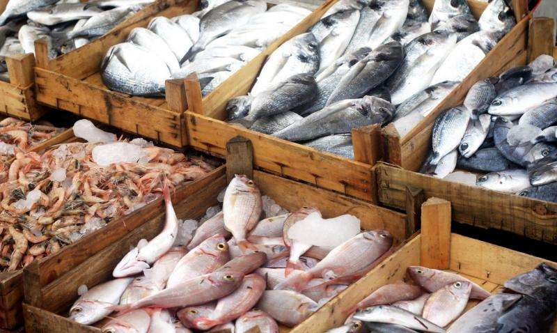 U.S. seafood traceability program proposed to combat illegal fishing and seafood fraud