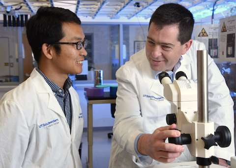 UTSW reports highest-resolution model to date of brain receptor behind marijuana's high