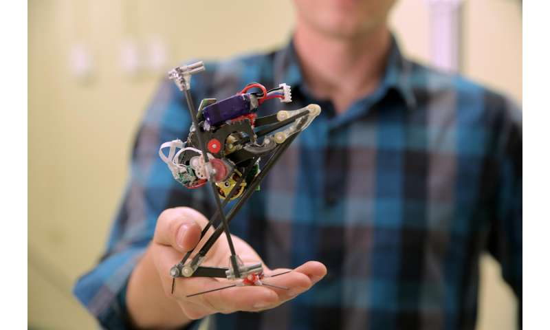 Wall-jumping robot is most vertically agile ever built