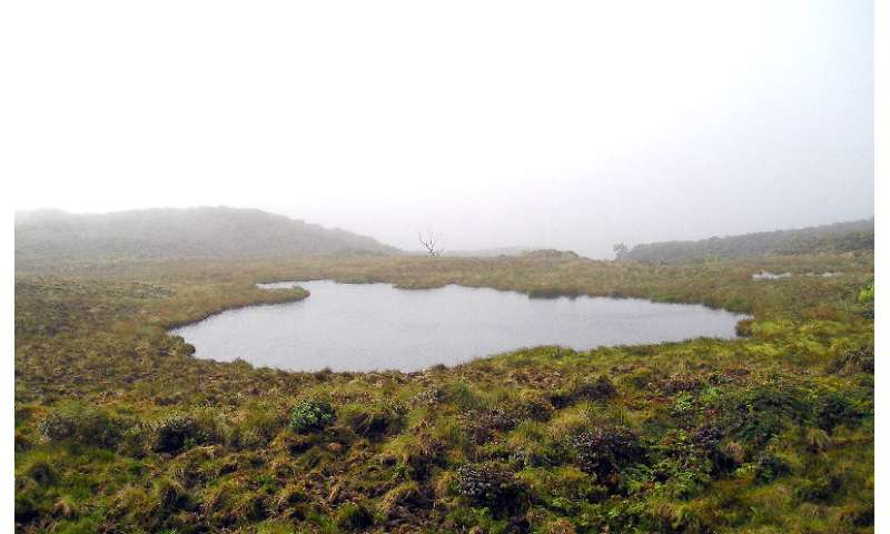 What is the wettest place on earth?