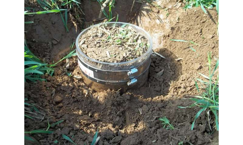Writing an equation for soil success