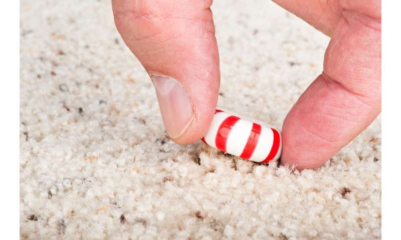 Researchers debunk 'five-second rule': Eating food off the floor isn't safe