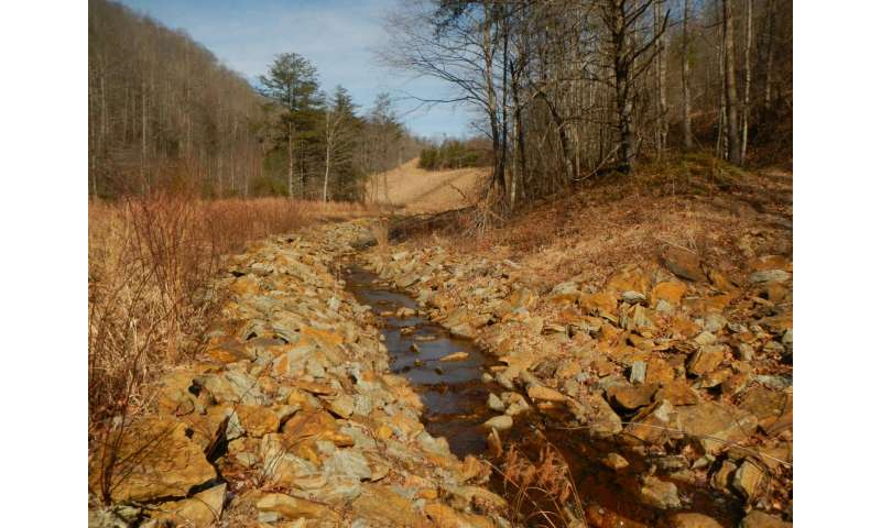 Researchers document large-scale changes in insect species inhabiting streams and rivers