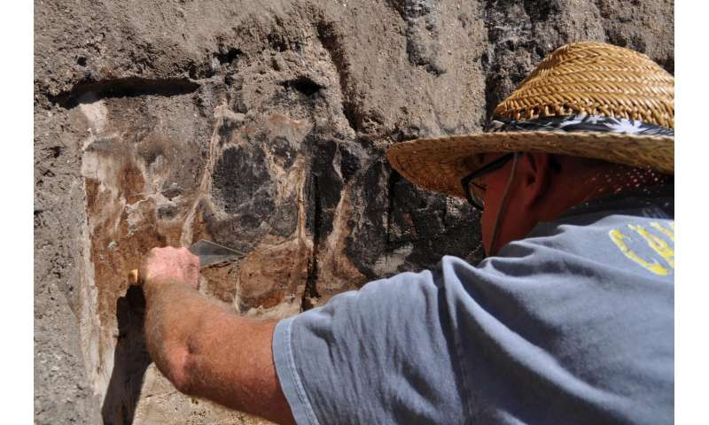Archaeologists uncover 13,000-year-old bones of ancient, extinct species of bison