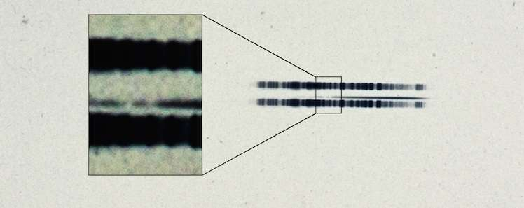 1917 astronomical plate has first-ever evidence of exoplanetary system