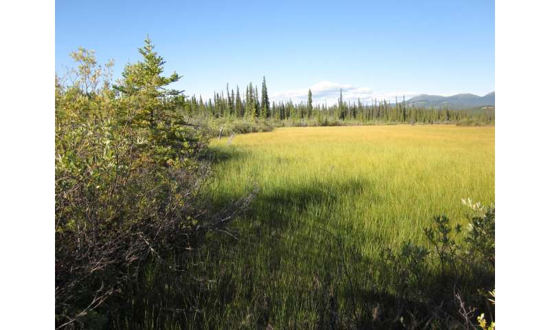 Carbon dioxide biggest player in thawing permafrost