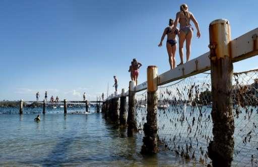 Children play on a shark net in Sydney's Little Manly Cove