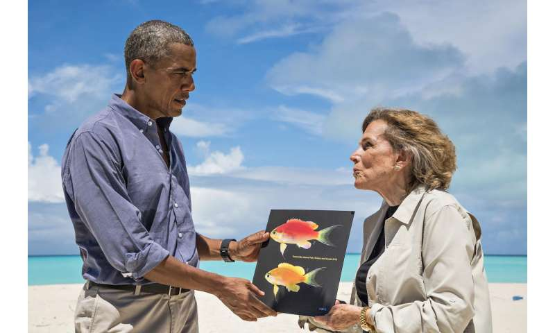 Hawaii's newest species named in honor of President Obama