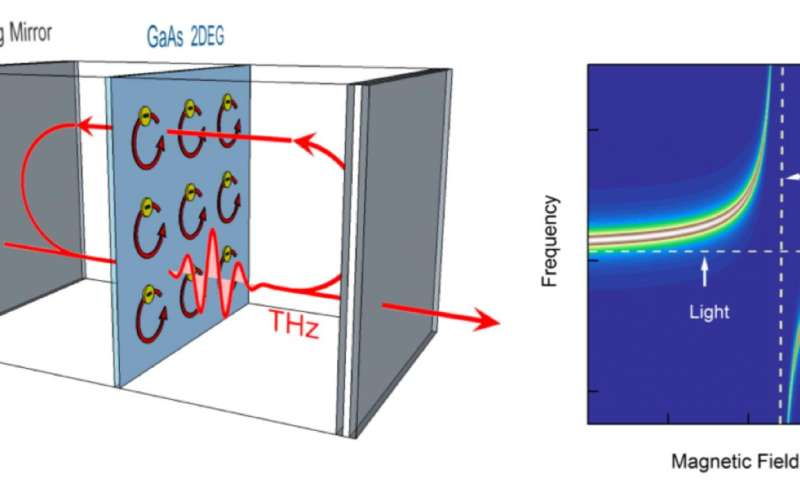 Light and matter merge in quantum coupling