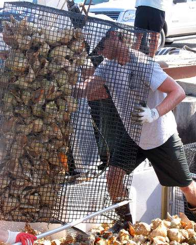Maturing oyster recovery projects bring calls for money