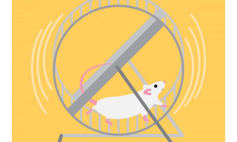 Natural compound reduces signs of aging in healthy mice