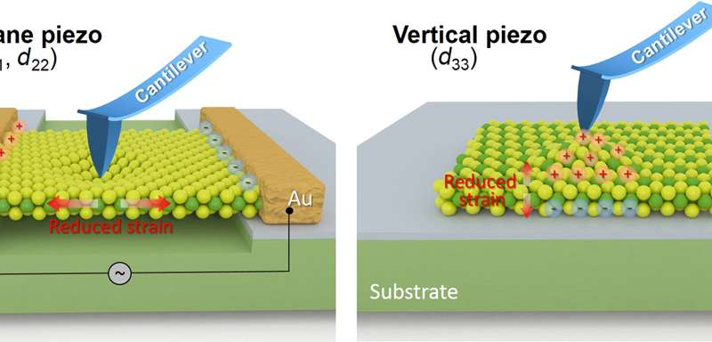 Schematic illustration of local characterization of in-plane piezoelectricity and vertical piezoelectricity