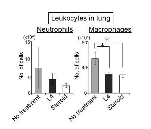 Sugar element of keratan sulfate halts the progress of emphysema