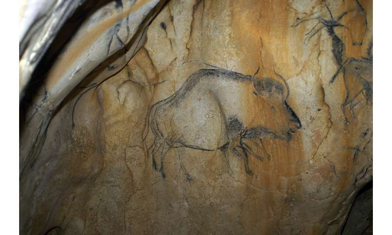 The Higgs Bison -- mystery species hidden in cave art