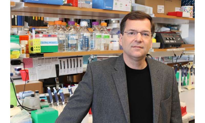 UMMS scientists co-discover first 'off-switches' for CRISPR/Cas9 gene editing