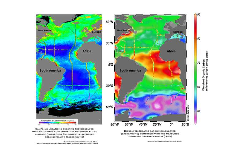 UM researchers study vast carbon residue of ocean life