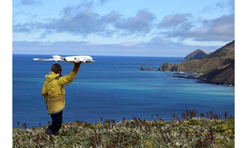 Using drones without disturbing wildlife