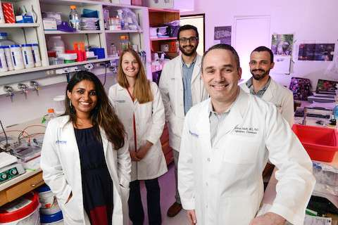 UT Southwestern researchers identify new mechanism of tuberculosis infection