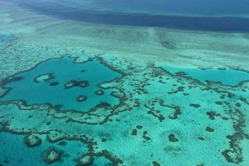 Conservationists said the incident highlighted the environmental risks to the Great Barrier Reef, particularly from shipping Aus