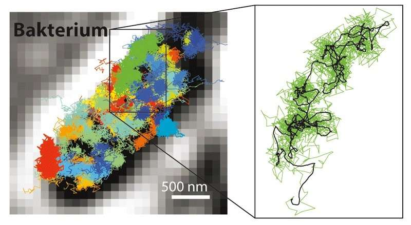 Researchers achieve ultimate resolution limit in fluorescence microscopy