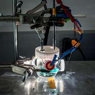 Making sense of failure in light-harvesting semiconductors
