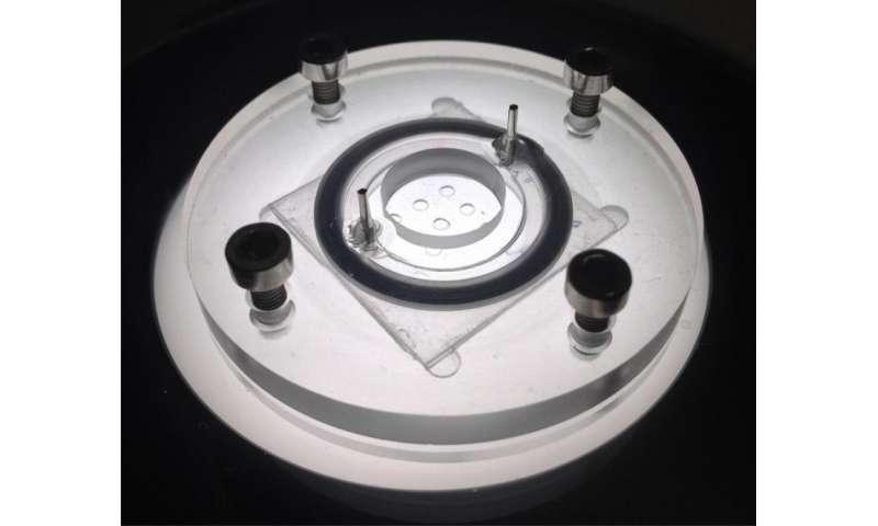 Microreactor replaces animal testing