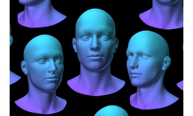 New algorithm could explain human face recognition