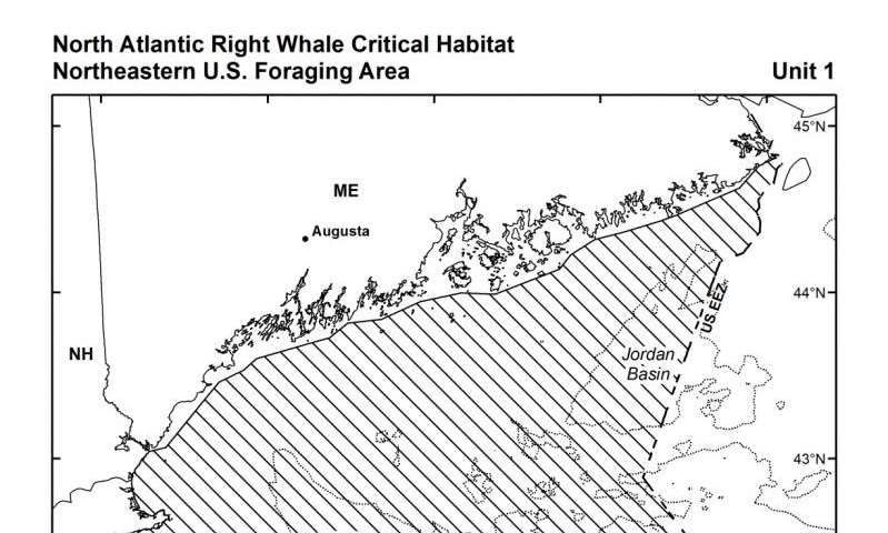 Noaa expands critical habitat for endangered North Atlantic right whales