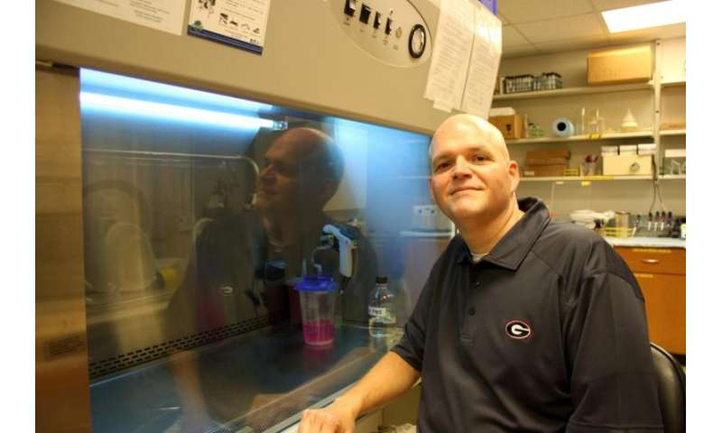 Research sheds light on mechanism that leads to drug-resistant superbugs