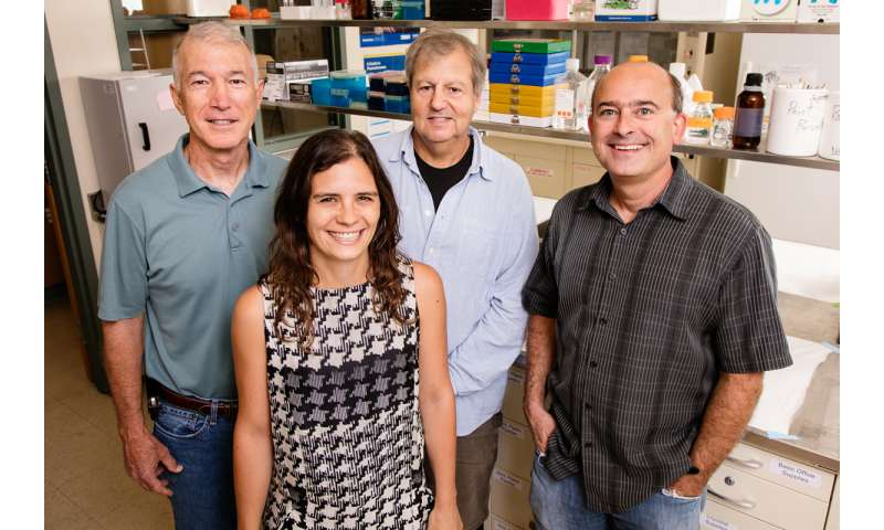 Study confirms long-term effects of 'chemobrain' in mice