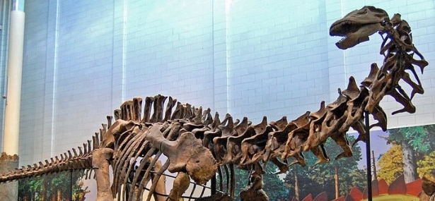 The evolution of sauropod dinosaurs