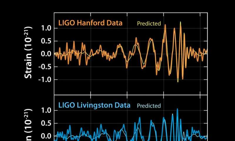 What happens when LIGO texts you to say it's detected one of Einstein's predicted gravitational waves
