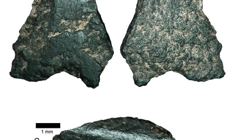 World's oldest axe fragment found in Australia