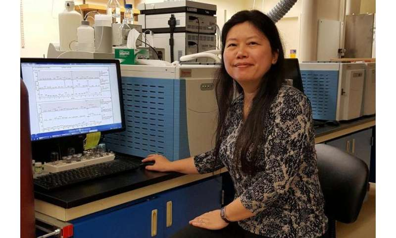 Carbon dioxide conversion process may be adapted for biofuel synthesis