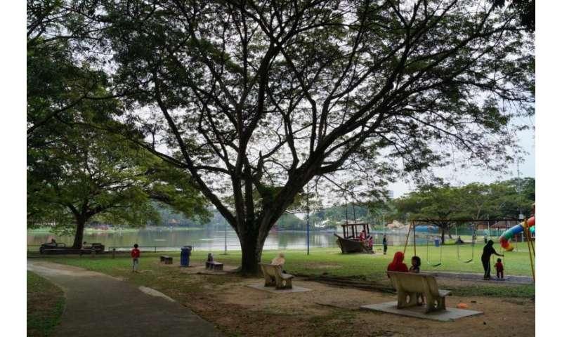 Computer models show park microclimates improve city life