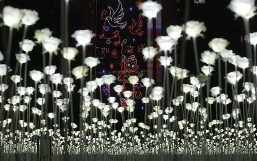 Hong Kong hosts Valentine's Day with 25,000 LED roses