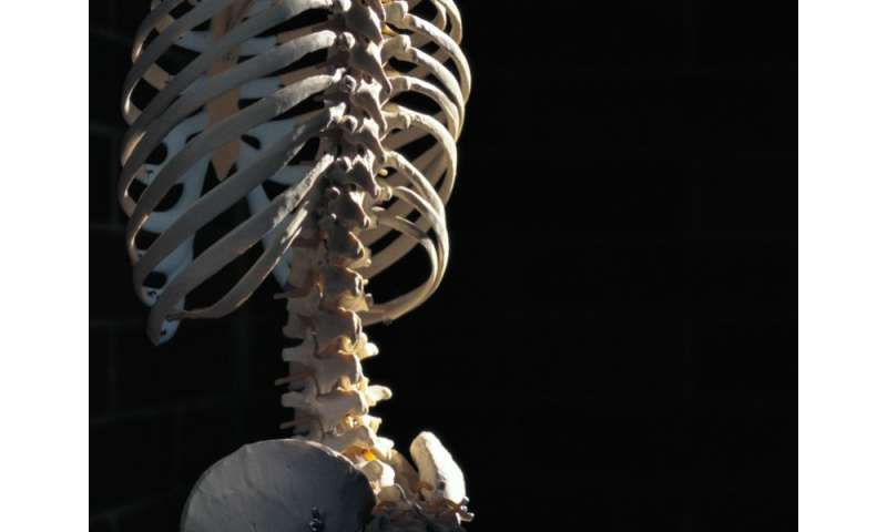 Platelet-rich plasma superior for lumbar facet joint syndrome