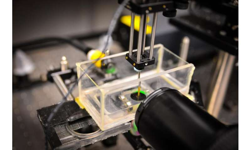 Scientists build new ultrasound device using 3D printing technology