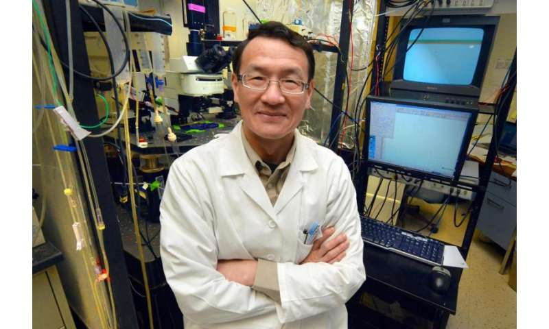 Study examines impact of 2 new antibodies in causing, treating myasthenia gravis