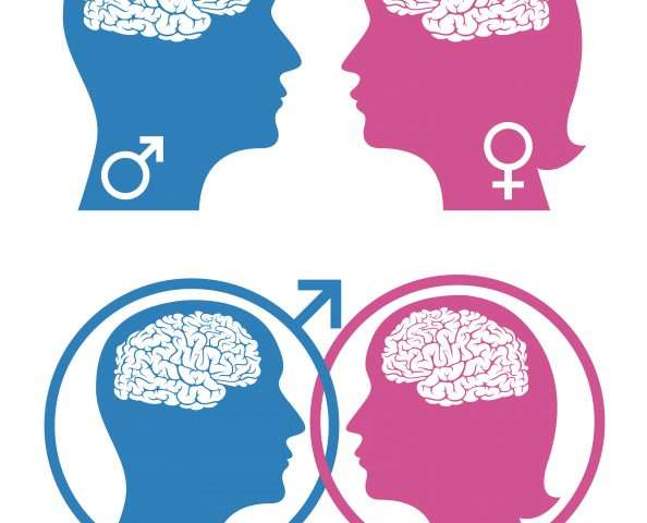 Study reveals the brain regulates social behavior differently in males and females