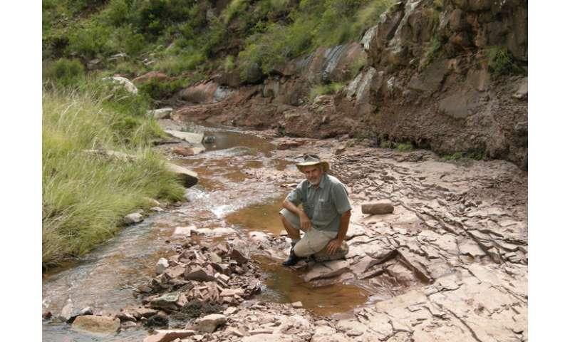 Researchers scan most complete heterodontosaurus skeleton ever found