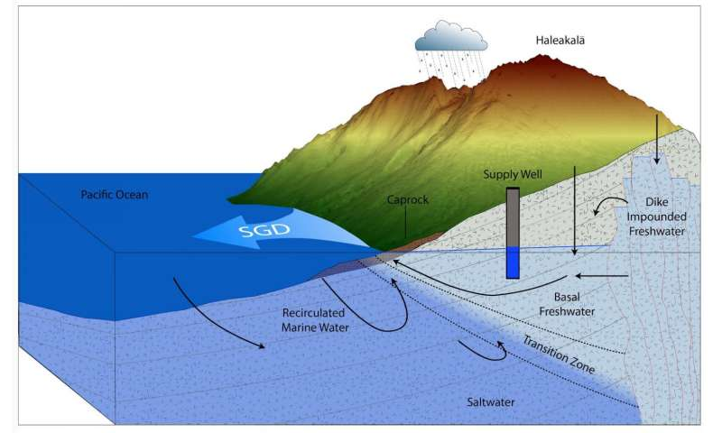 Hawai'i researchers link quality of coastal groundwater with reef degradation on Maui