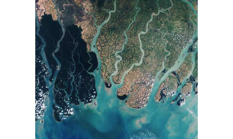 Image: Sentinel-2A view of the Sundarbans in Bangladesh