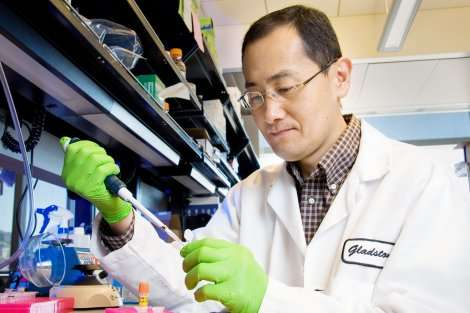 Induced pluripotent stem cells—10 years after the breakthrough